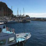 Незабываемое путешествие на яхте до Пуэрто-Рико