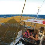 Почему сорняк саргассума создаёт всё больше проблем для трансатлантических моряков